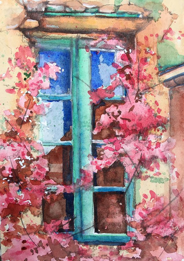 Bougainvillea reflections by Rebecca Matthews