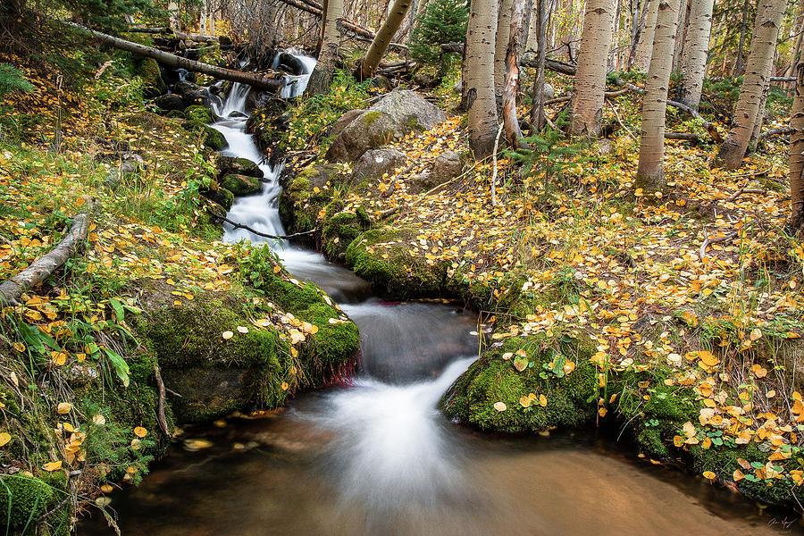 Boulder Brook by Aaron Spong