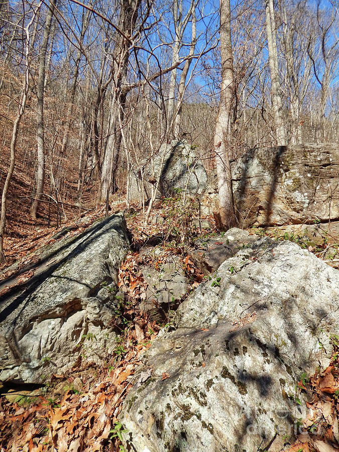 House Mountain Photograph - Boulders Along The Trail by Phil Perkins