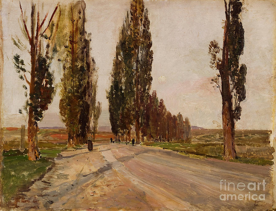 Boulevard Of Poplars Near Plankenberg Drawing by Heritage Images