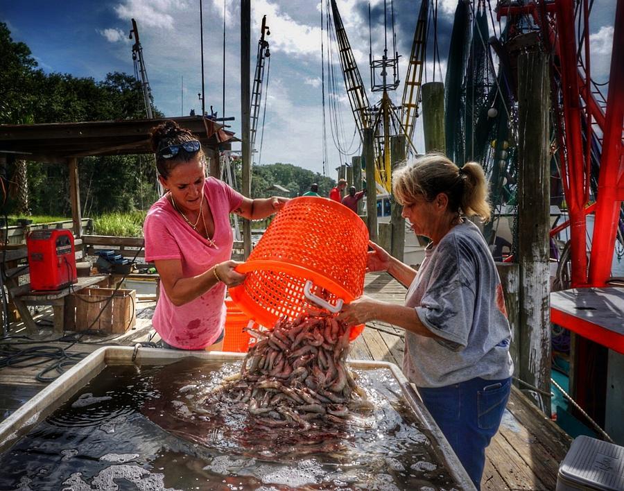Bounty of Shrimp by Patricia Greer