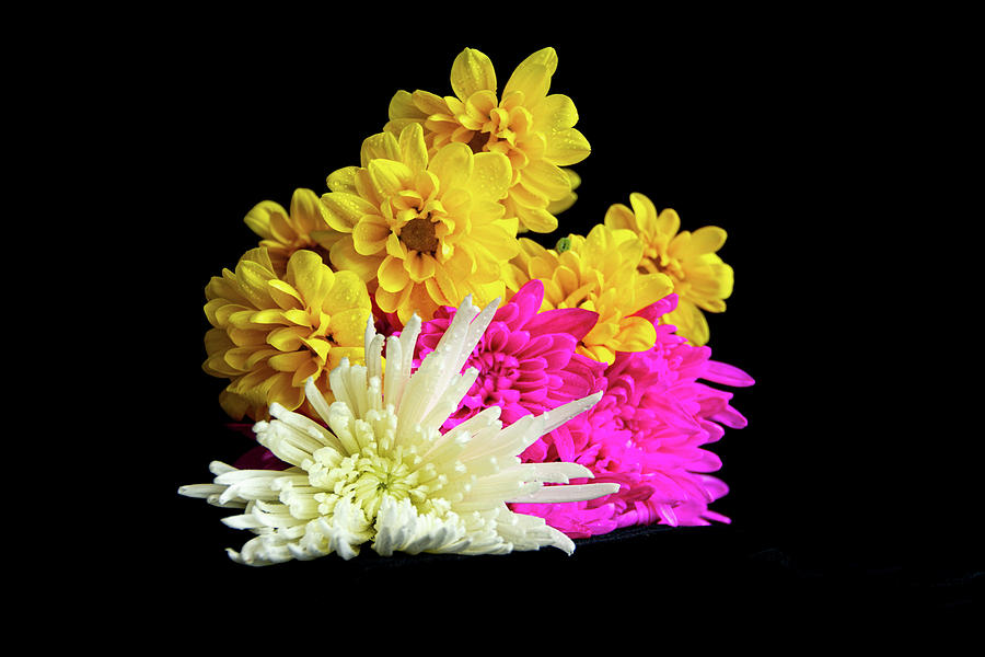 Bouquet Of Colorful Flowers Photograph