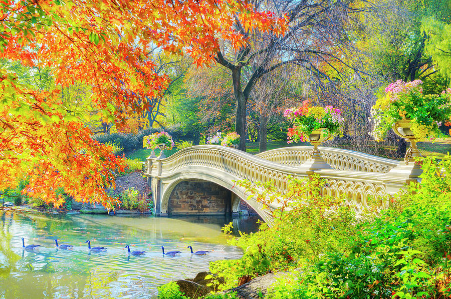 Bow Bridge, Central Park, In Autumn Photograph by Mitchell Funk