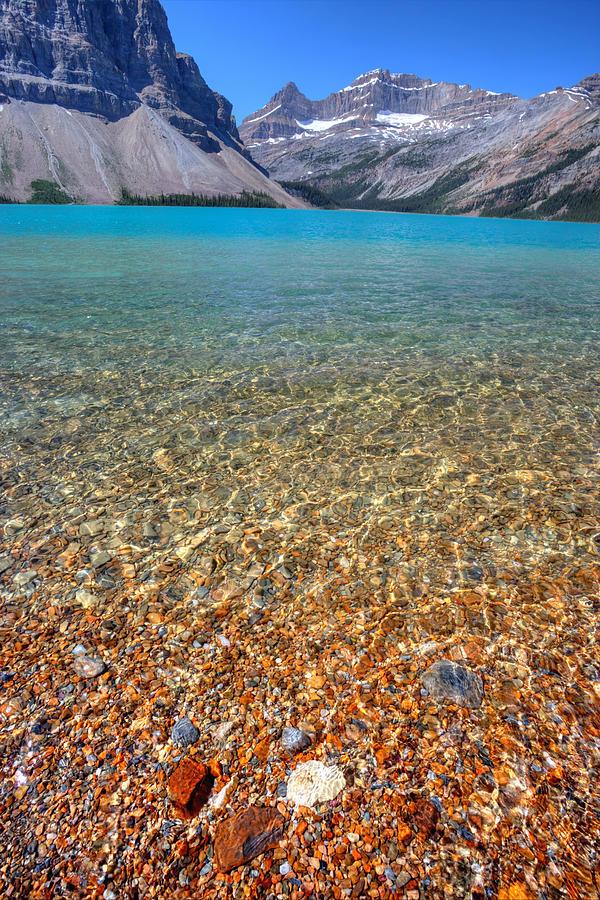 Bow Lake by David Andersen