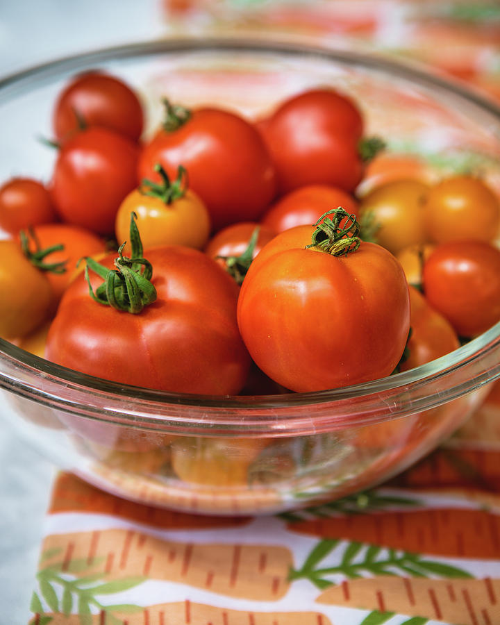 Bowl of Tomatoes by Rebecca Cozart