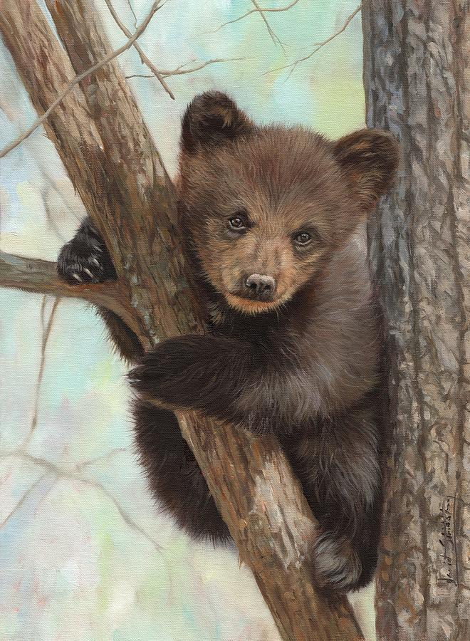 Bown Bear Cub In Tree by David Stribbling
