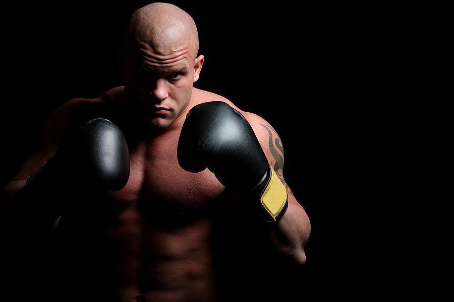 Boxer Photograph by Vuk8691