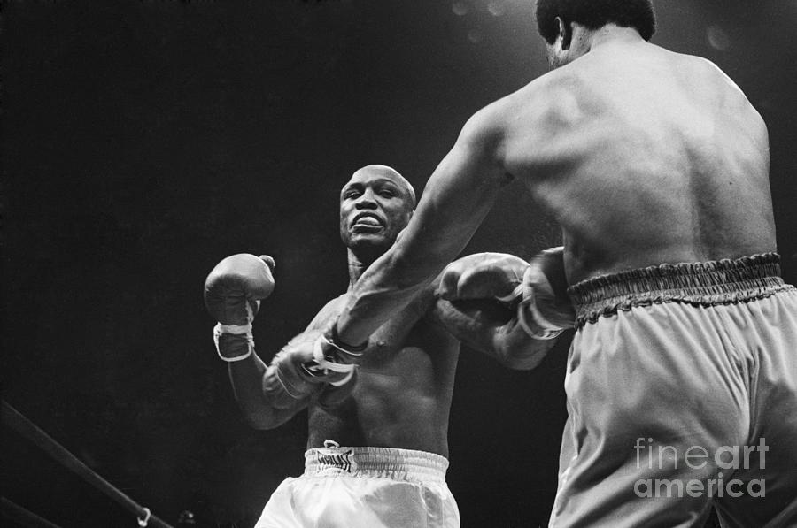 Boxers Joe Frazier And George Foreman Photograph by Bettmann