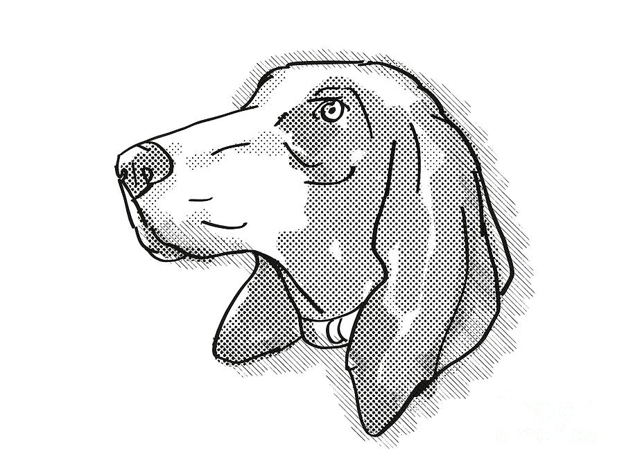 Retro Digital Art - Bracco Italiano Dog Breed Cartoon Retro Drawing by Aloysius Patrimonio