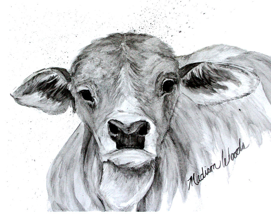Brahman Baby by Madison Woods