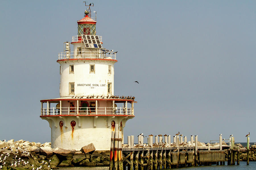 Brandywine Shoal Lighthouse and pier by Karen Foley
