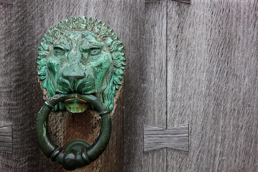 Brass Lion Door Knocker On A Wooden Door Photograph by John Short / Design Pics