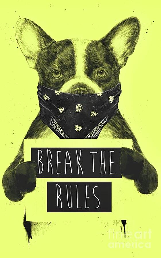 Break the Rules  by EliteBrands Co