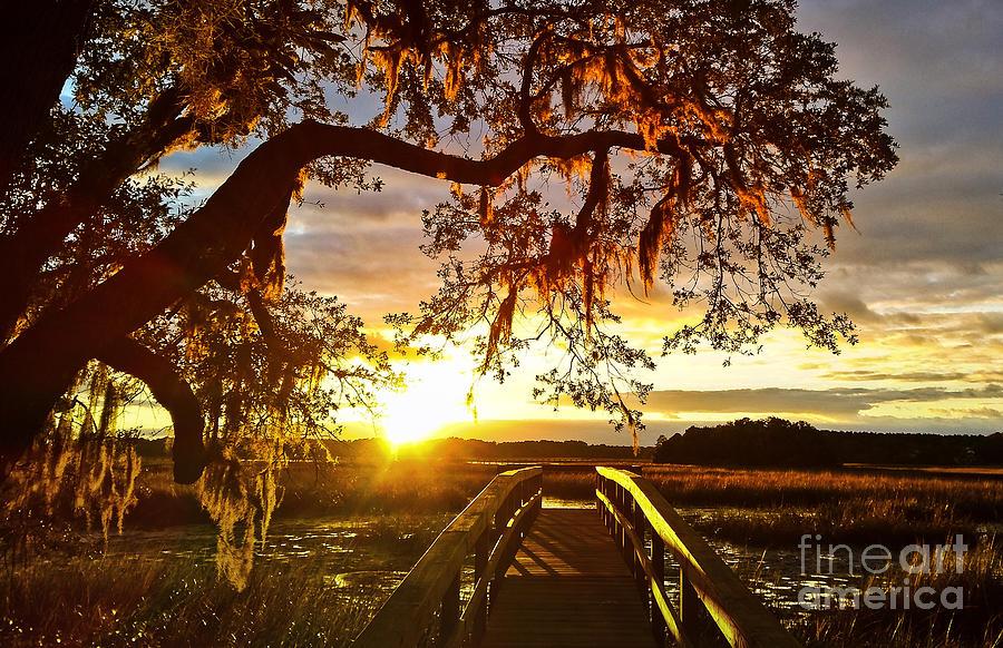 Johns Island Photograph - Breaking Sunset by Robert Knight