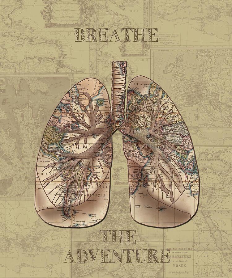 Lung Digital Art - Breathe The Adventure 3 by Bekim M