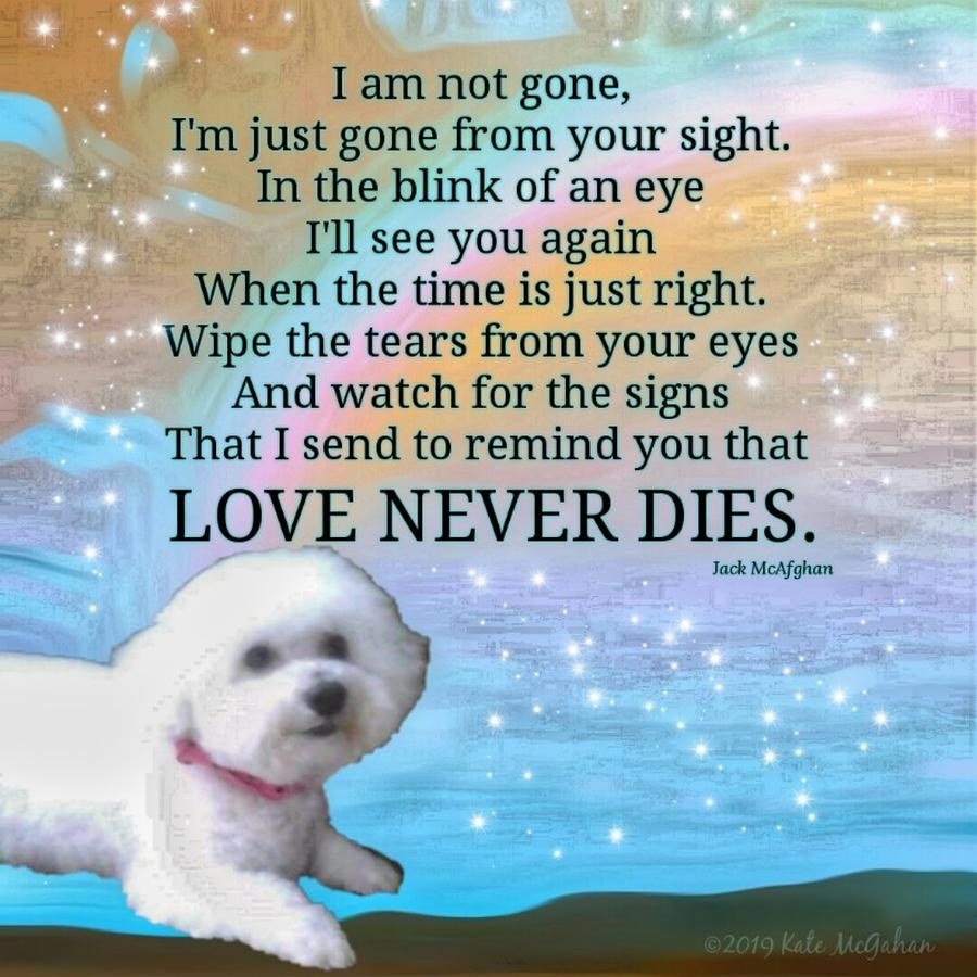 Canine Digital Art - Custom Order Unavailable For Public Purchase Bree Love Never Dies by Kate McGahan
