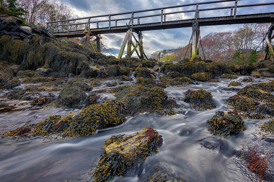 Bridge Across Back Cove by Rick Berk