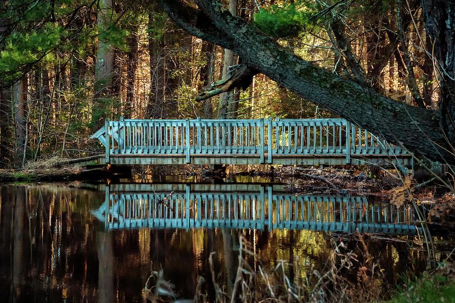 Bridge at Belding Wildlife Management Area by Phil Cardamone