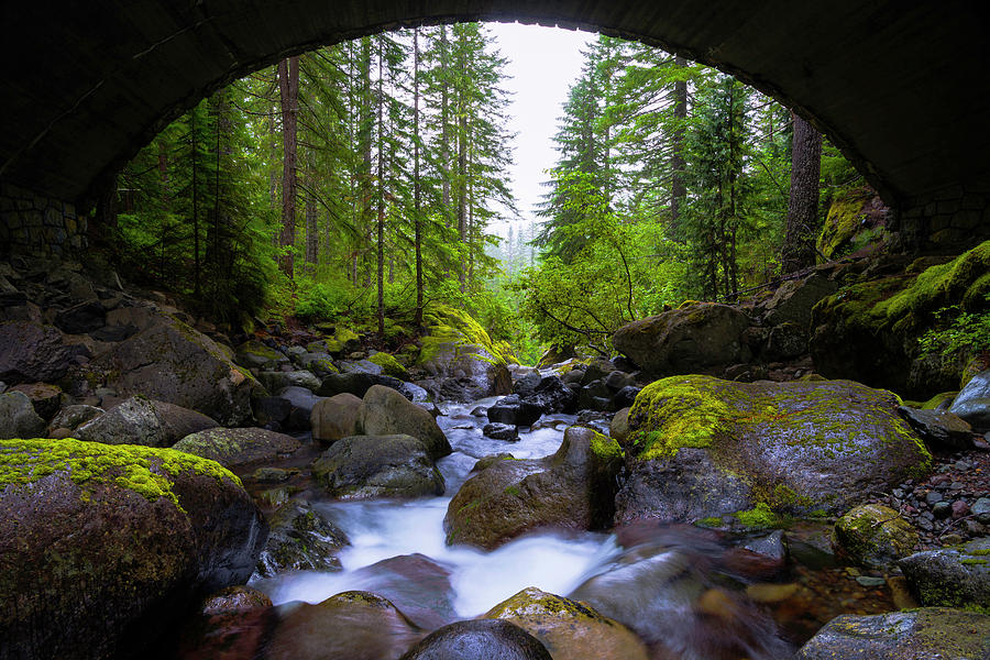 River Photograph - Bridge Below Rainier by Chad Dutson
