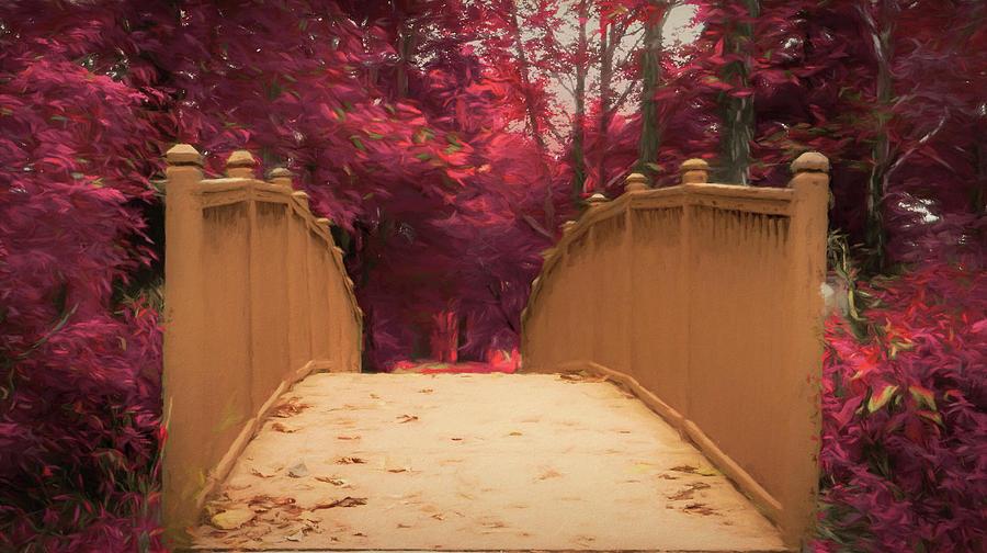 Bridge in the Woods by Jason Fink