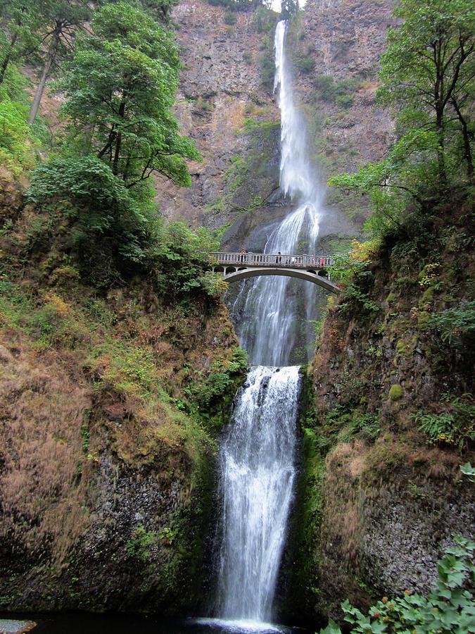 Bridge over Multenoma Falls in Oregon by Julia L Wright