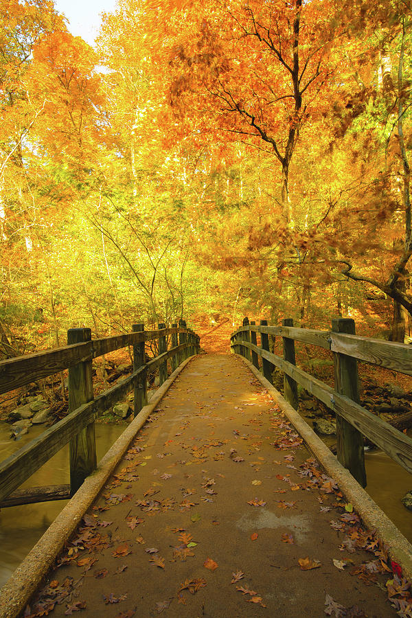 Bridge over Troubled Waters in Fall by Jeff at JSJ Photography
