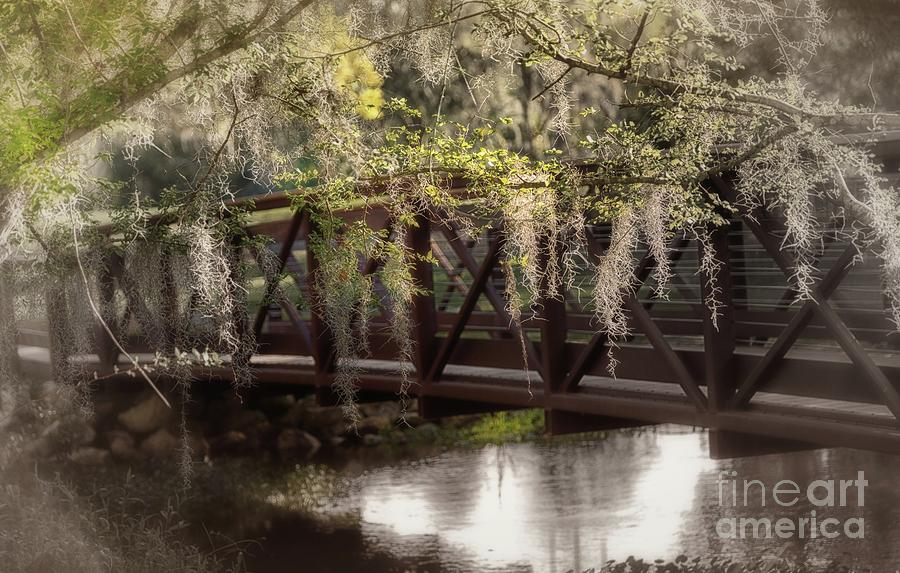 Bridge Over Troubled Waters by Mary Lou Chmura