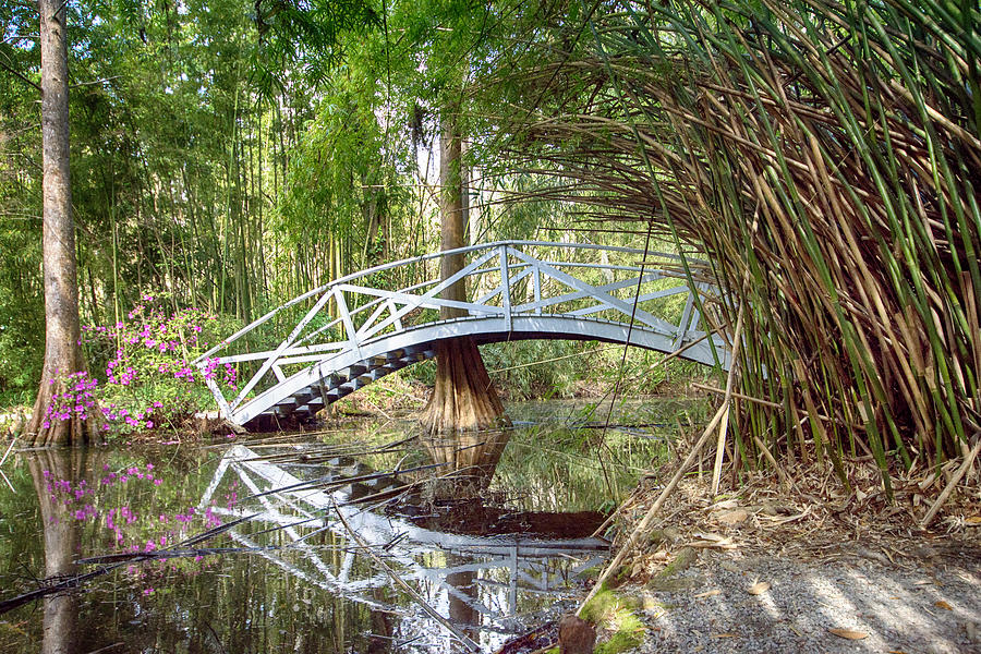 Bridge Reflection by Crystal Wightman