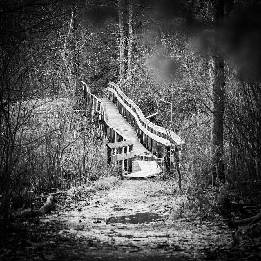 Landscape Photograph - Bridge To Nowhere by Ryan Pelletier