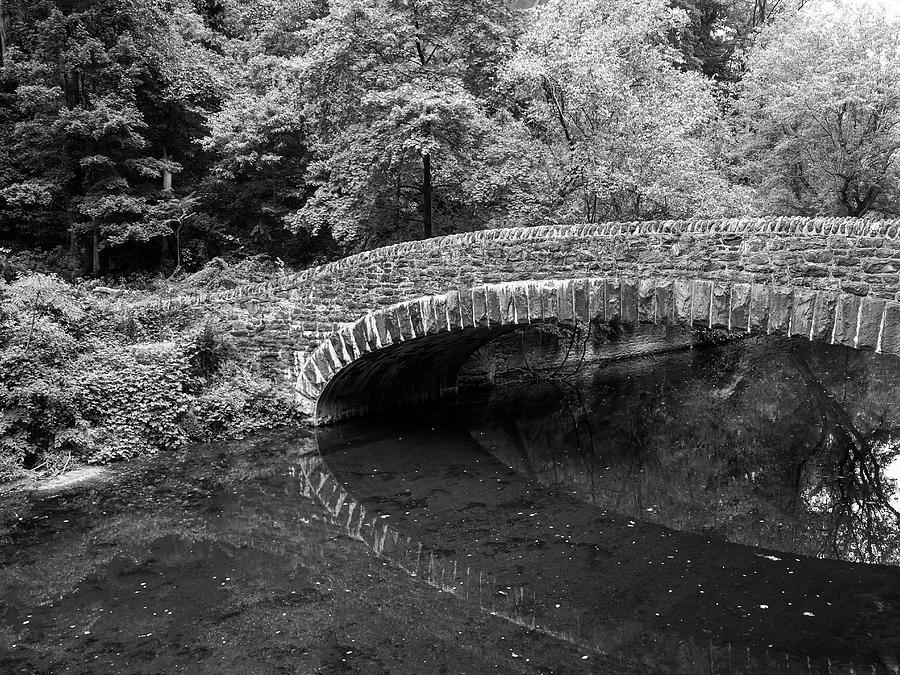 Bridges at Wissahickon Creek,  by Louis Dallara