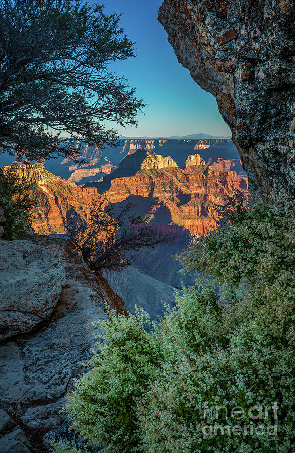 America Photograph - Bright Angel Window by Inge Johnsson