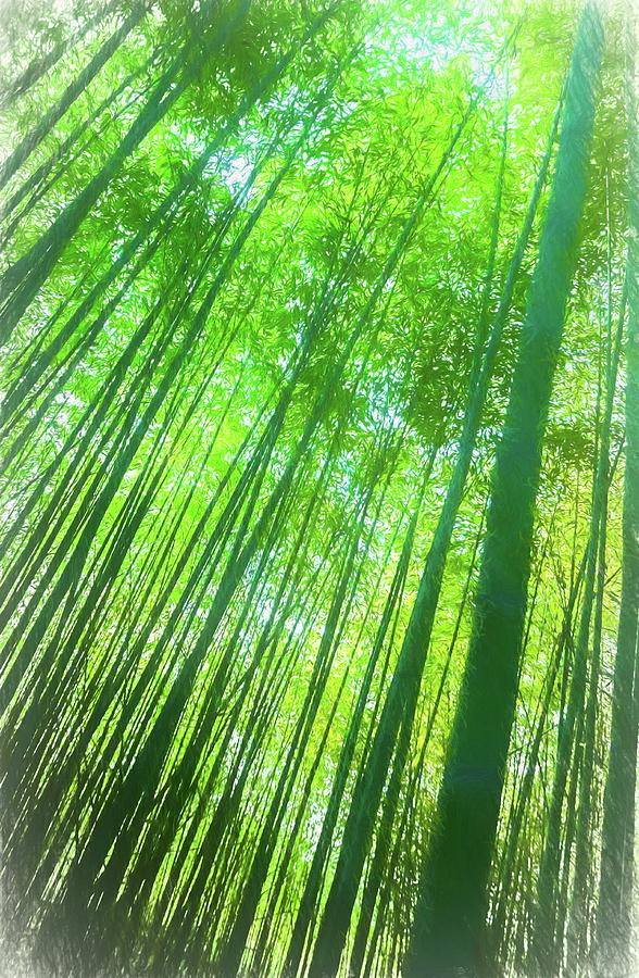 Bright Bamboo Forest by Michael Campbell