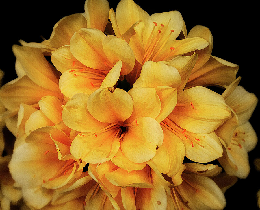 Bright beautiful yellow flower by Suguna Ganeshan