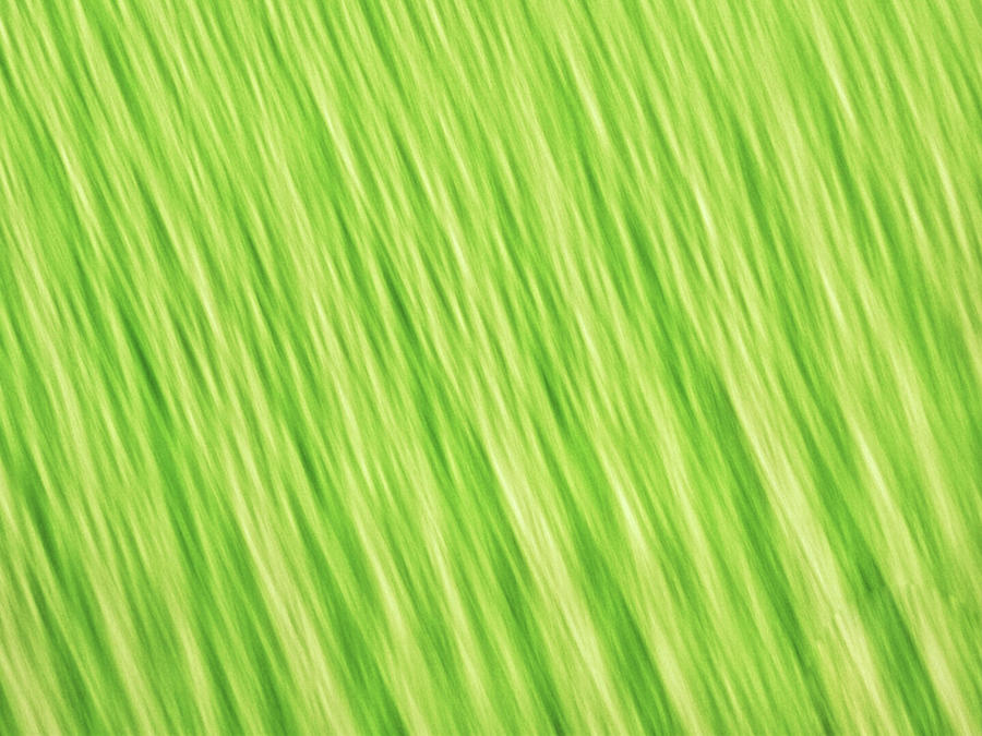Bright chartreuse green blurred diagonal lines abstract by Teri Virbickis