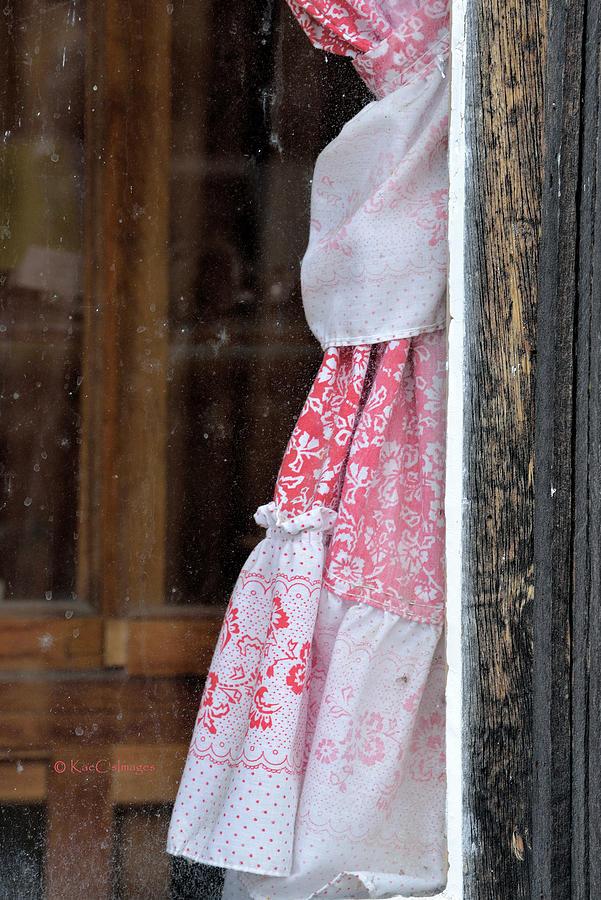Bright curtain through Fly-specked Window by Kae Cheatham