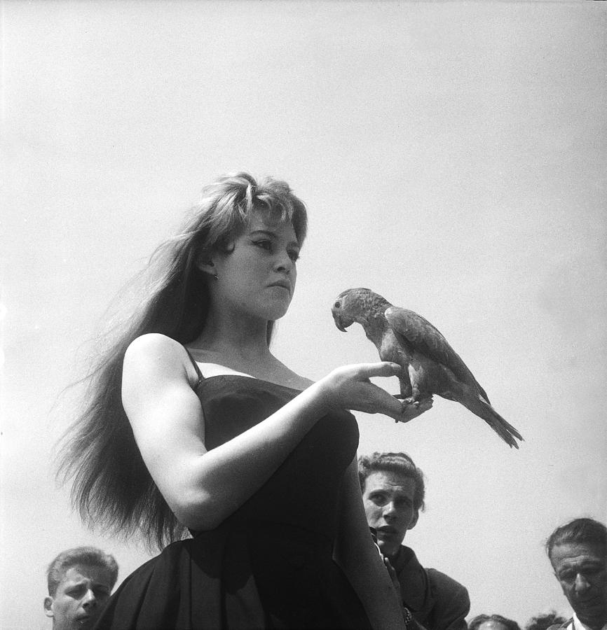 Brigitte Bardot In Cannes In 1956 Photograph by Keystone-france