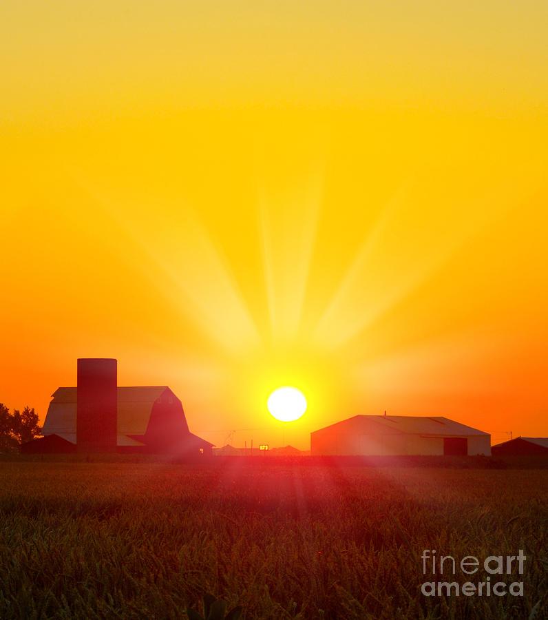 Sunrise Photograph - Brilliant Orange Sunrise Over A Corn by Paul Orr