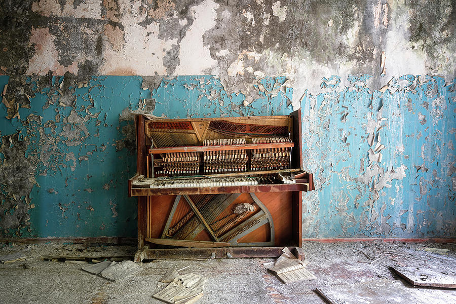 Broken and Abandoned Piano by Roman Robroek