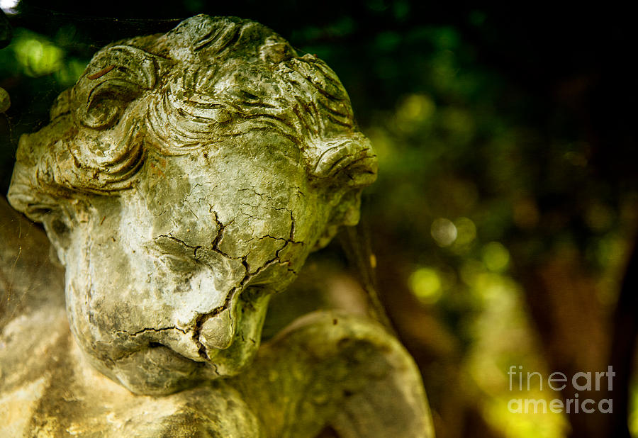 Broken Angel by Debra Fedchin