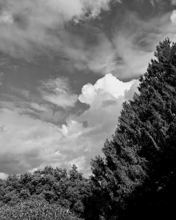 Sky Photograph - Broken Sky by Darrell MacIver