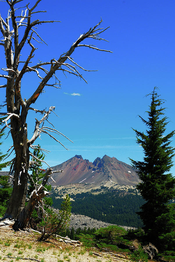 Broken Top and Snag, Vertical by SCENIC EDGE PHOTOGRAPHY