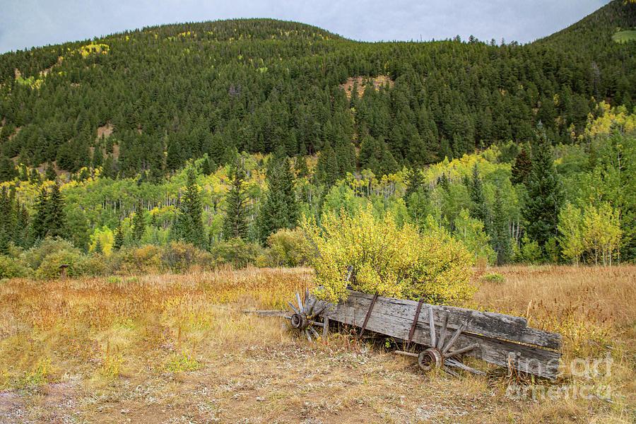 Broken Wagon Photograph