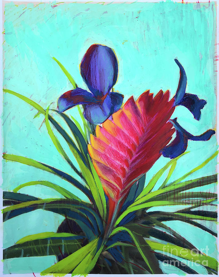Bromeliad Blossoms by John Castell