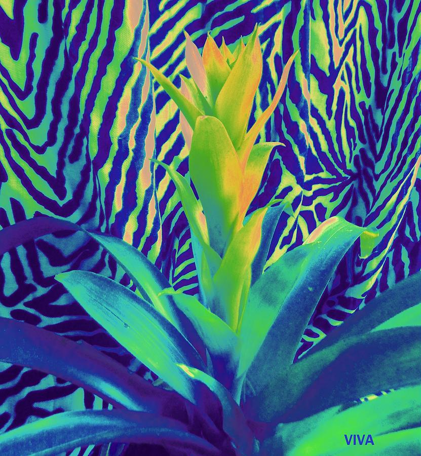 Bromeliad Exotica Abstract by VIVA Anderson