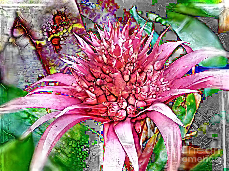 Bromeliad Revisited by Trudee Hunter