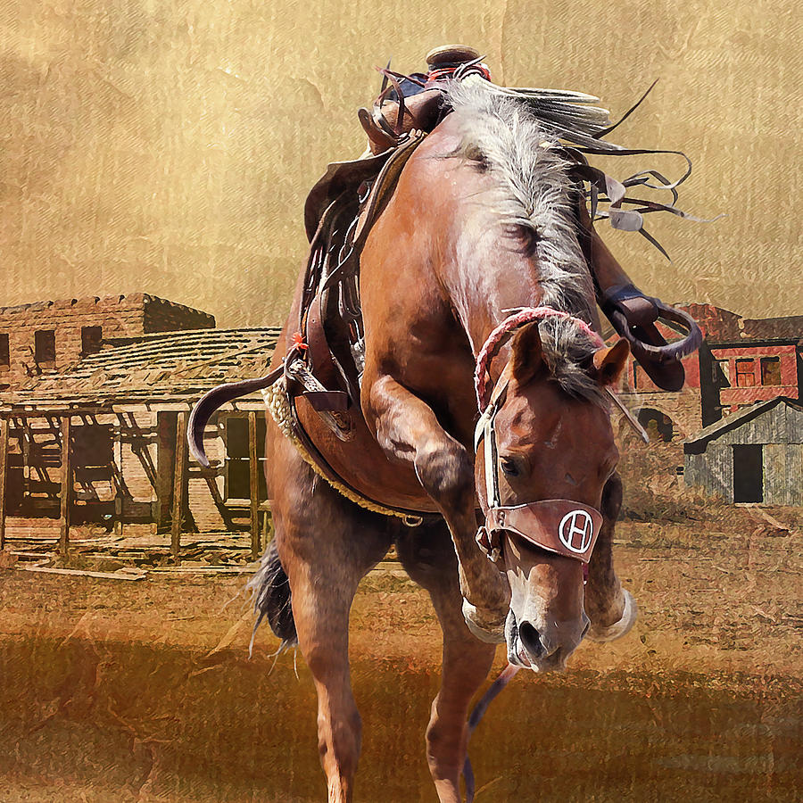Rodeo Photograph - Bronco In Town by Jeff Burgess