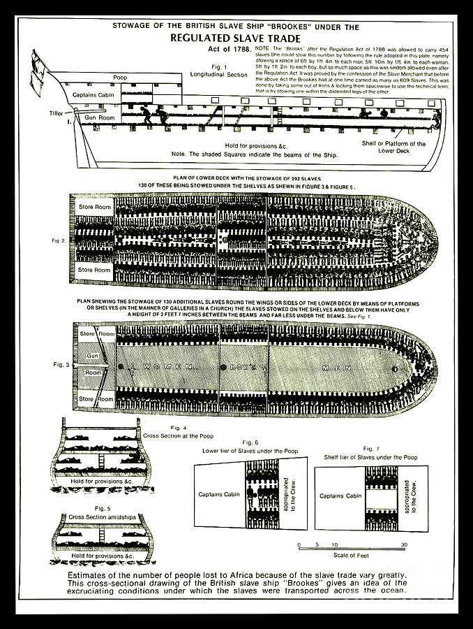 Brookes Slave Ship Middle Passage Stowage Diagram 1788 by Doc Braham