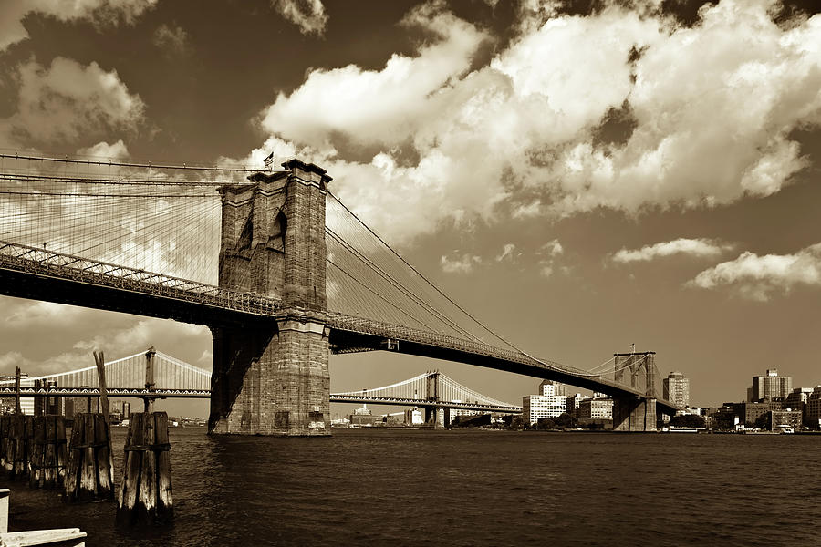 Brooklyn Bridge In Sepia Photograph by Gcoles