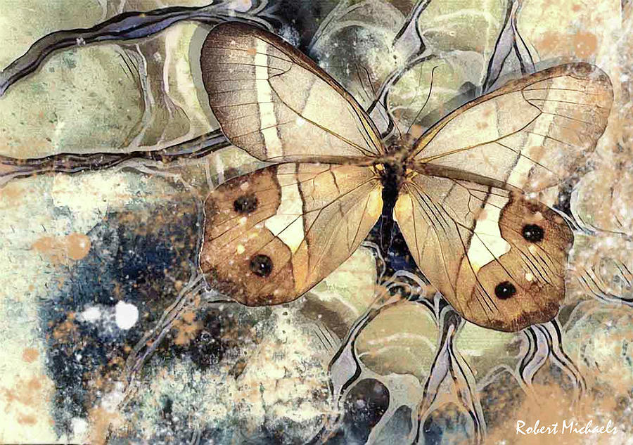 Brown Wings by Robert Michaels