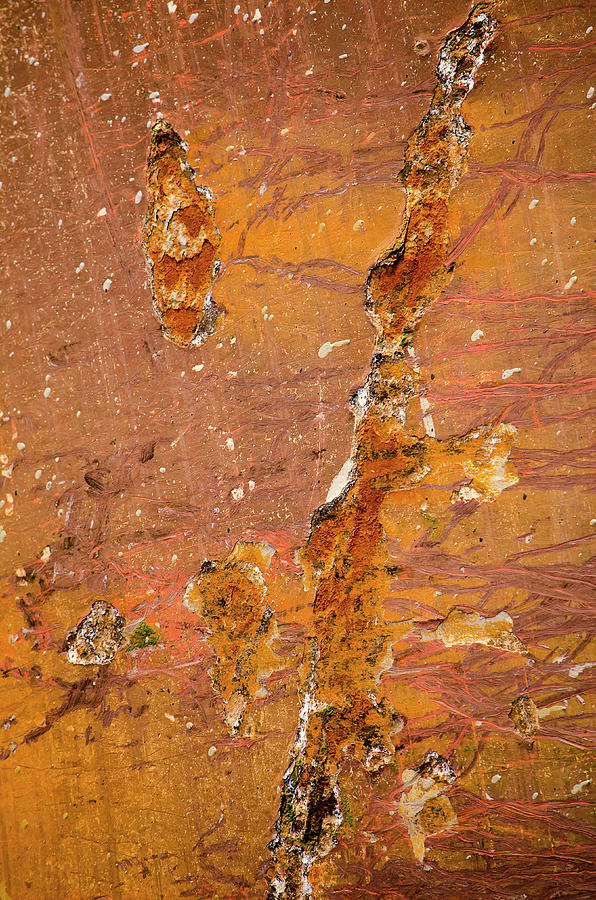 Brownish red ship's hull with rust by Frans Blok